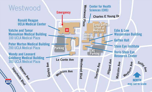 Directions to the Bariatric Consultation Suite